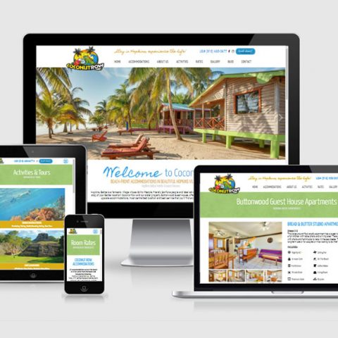 Belize website design - Coconut Row